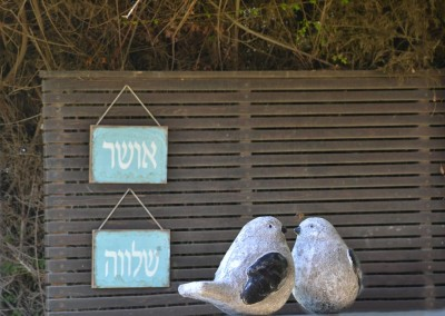 דירה בחיפה שהולבשה