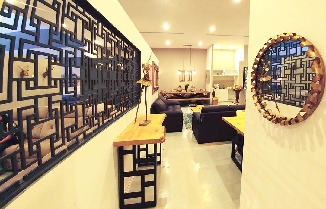AnatZiv-designer_house9
